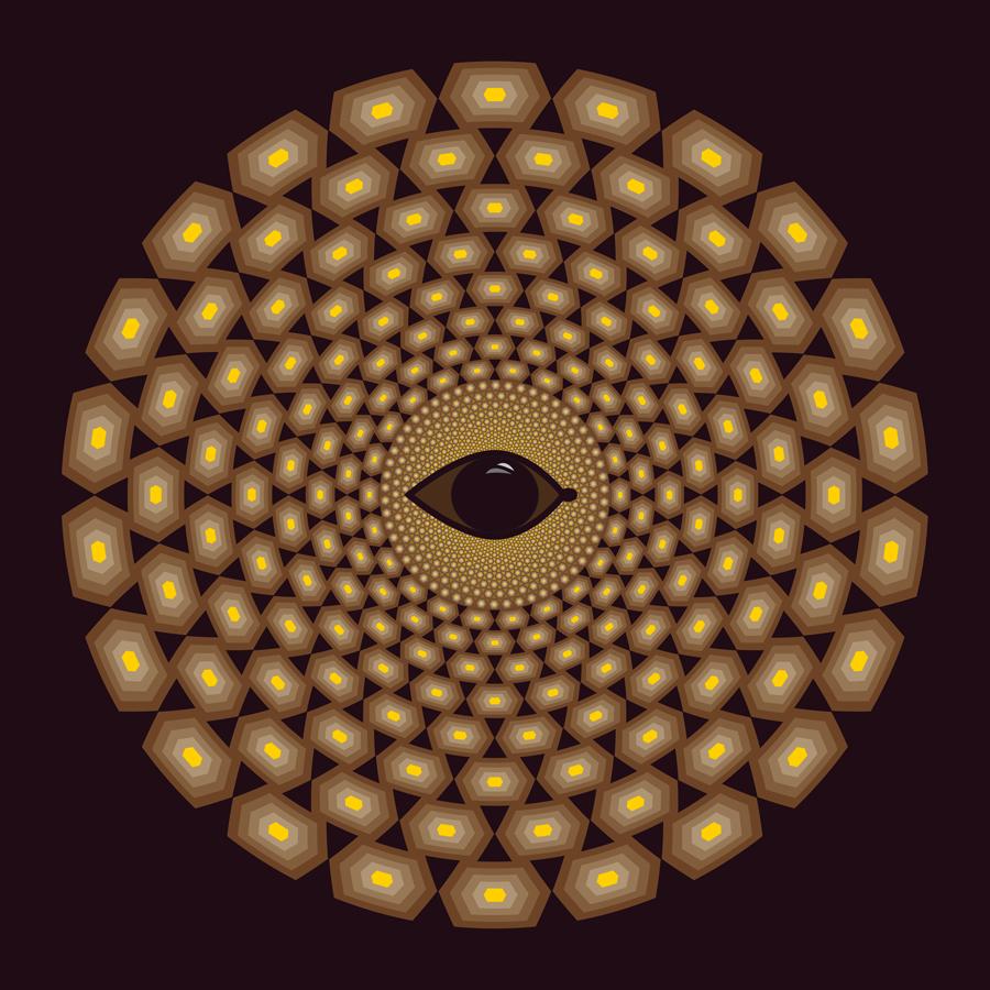 10-Optique-tortueWeb900