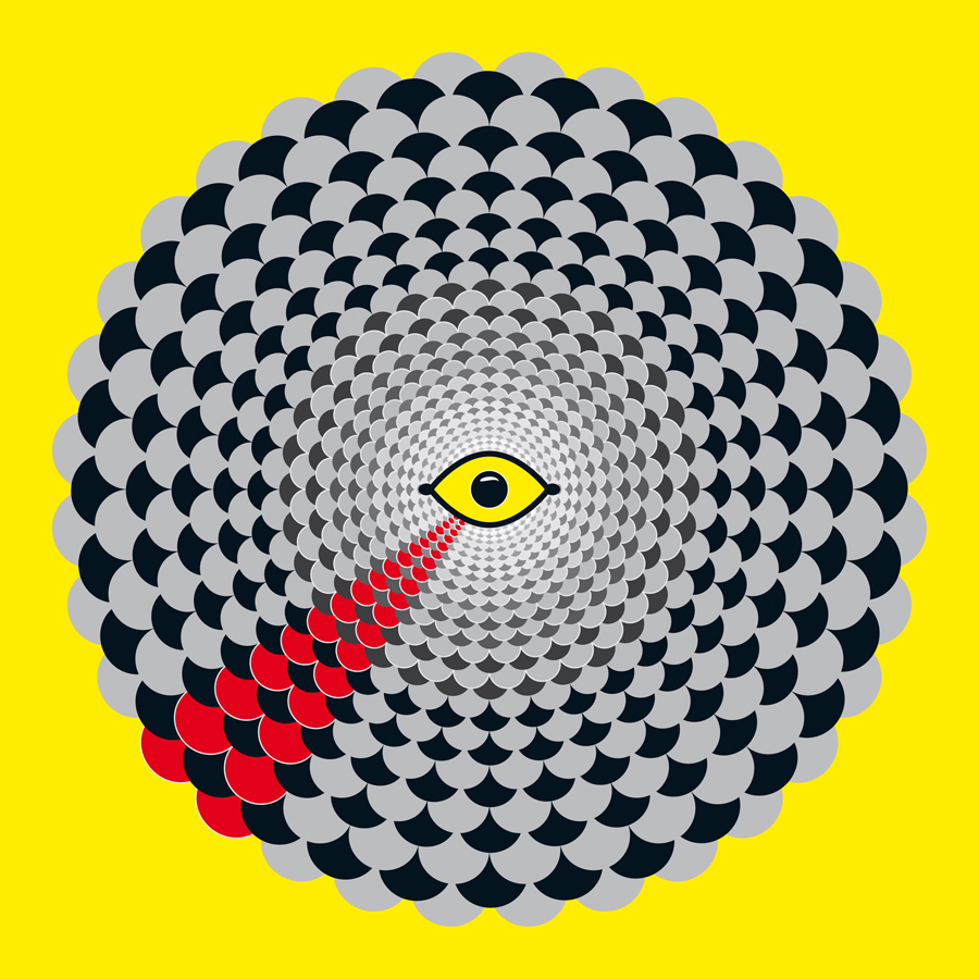 4-Optique-oeilPerroquetGrisGabonJWeb900