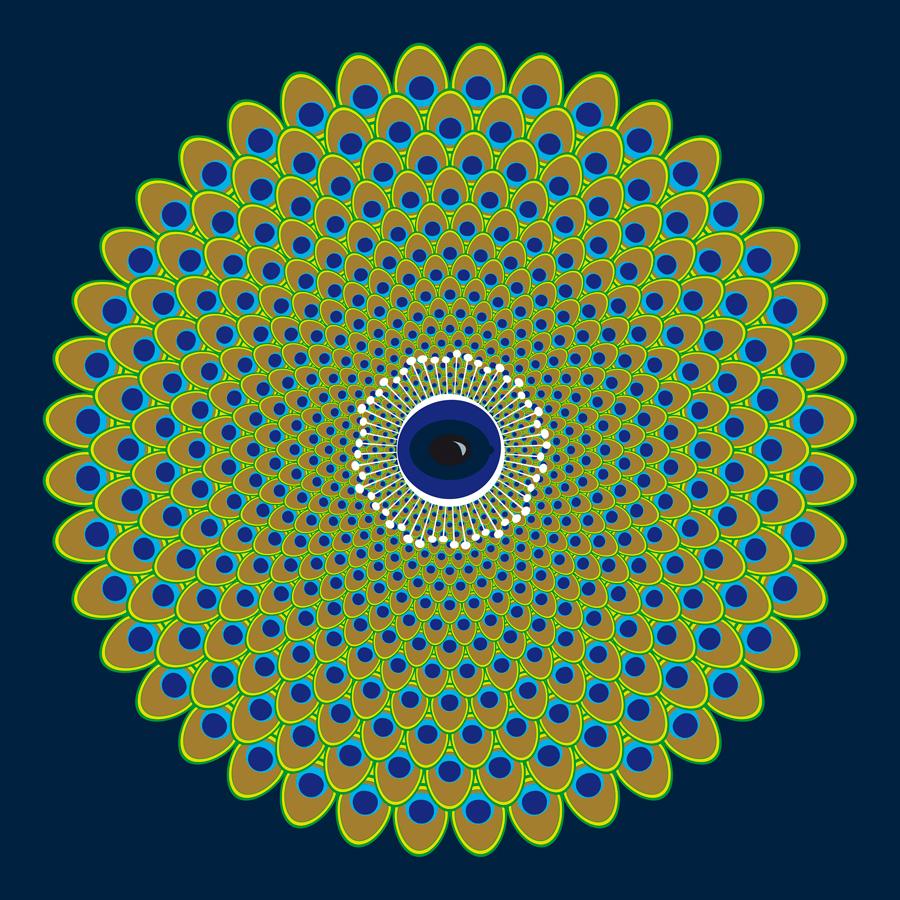 6_Optique-paonJWeb900