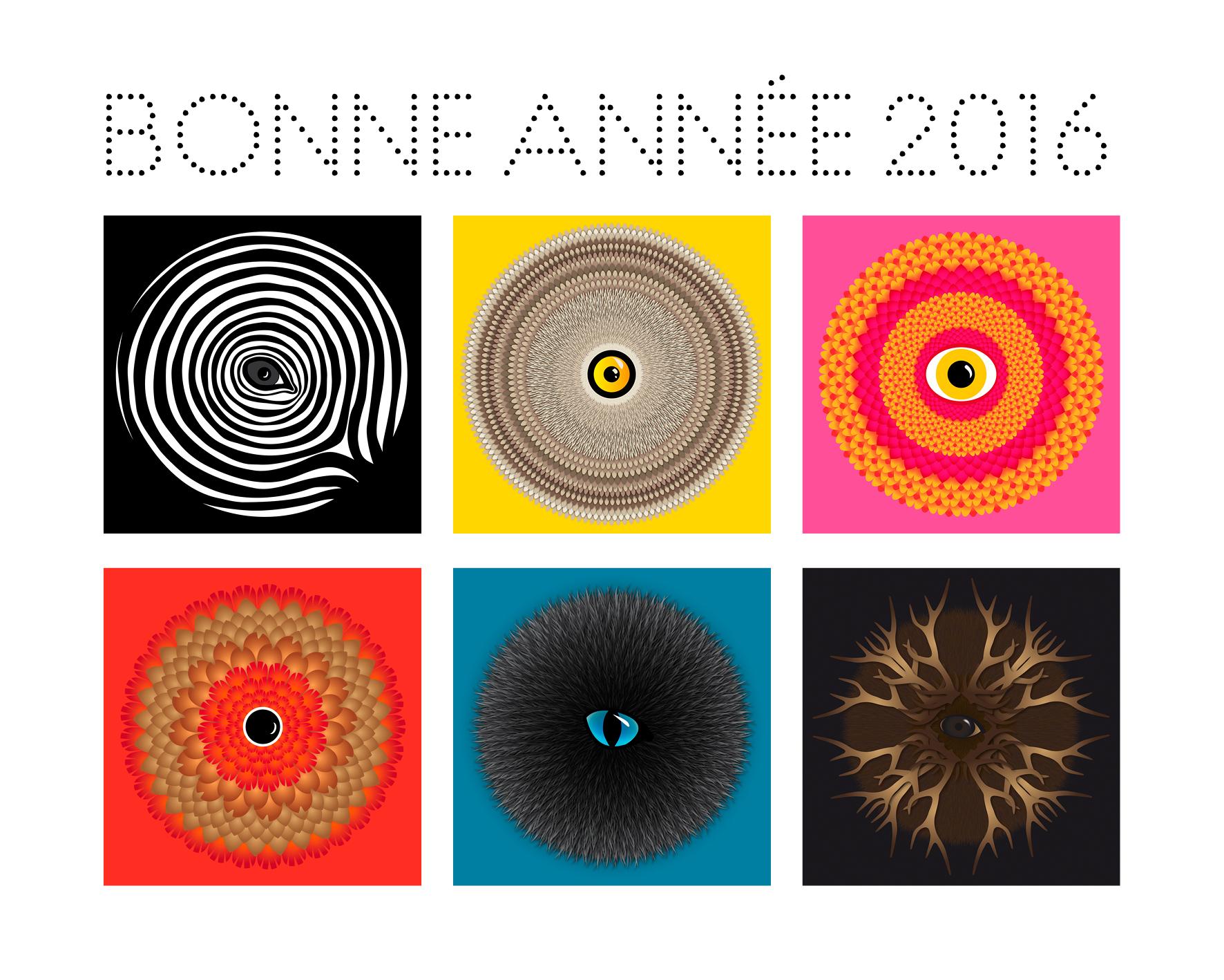 bonne_annee_2016